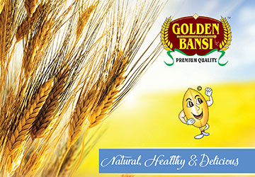 Golden Bansi News